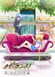 image of anime Hayate no Gotoku! - Can't Take My Eyes Off You